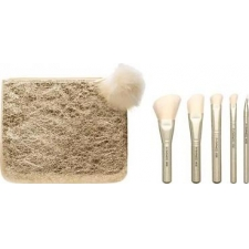 M.a.c. snow ball brush kit advanced